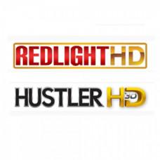 REDLIGHT HD 10 (viaccess) 12 mesecev